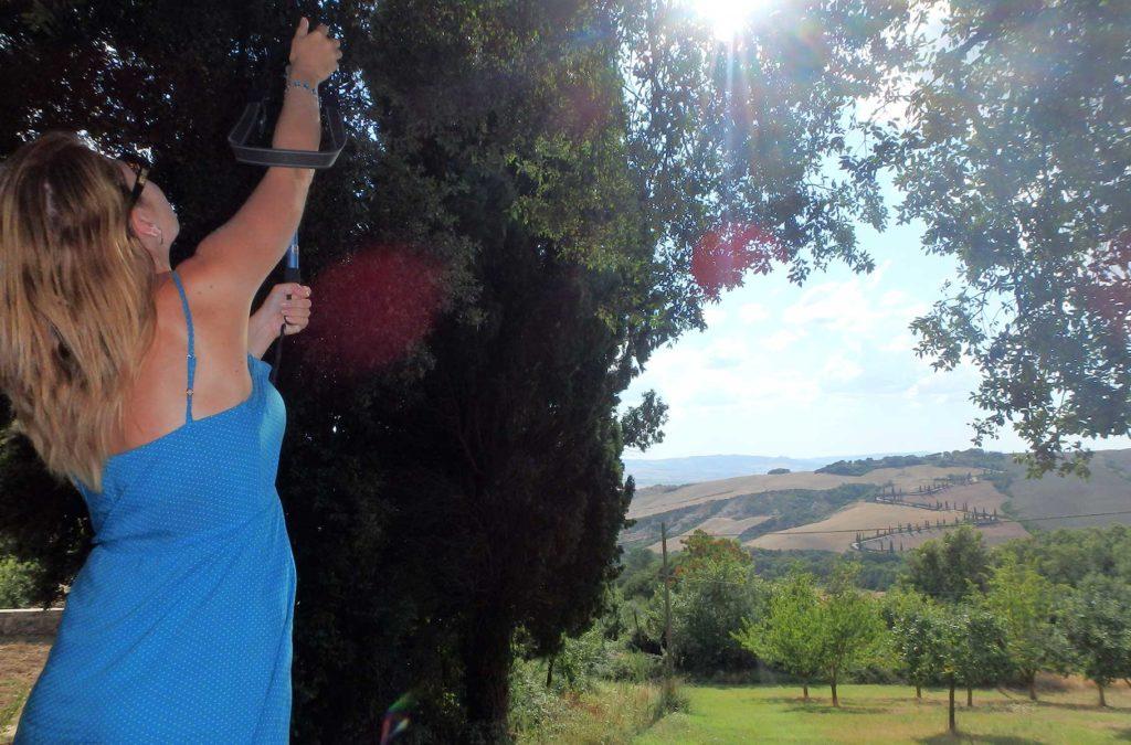 Decepções de viagem - Estrada de Ciprestes de La Foce, na Toscana (Itália)