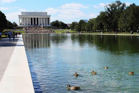 O que fazer em Washington: 10 atrações imperdíveis