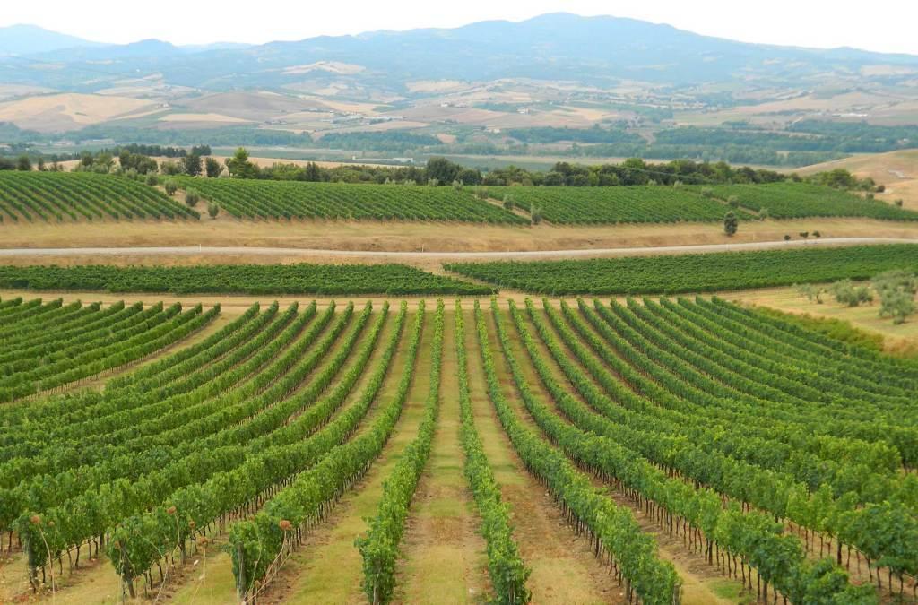 Roteiro na Toscana - Castello Banfi