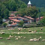 Valle (Cabuérniga)