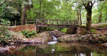 Puente sobre el río Bayones