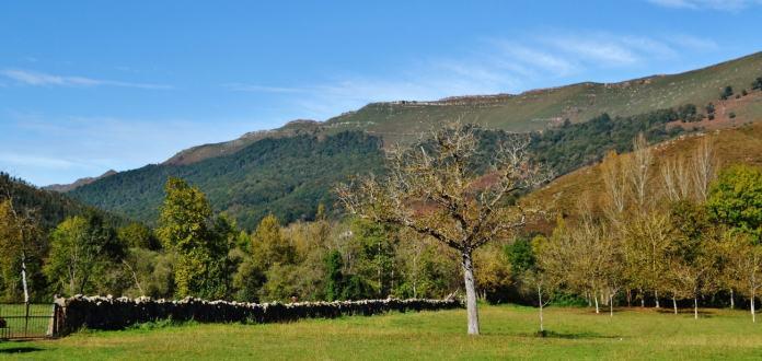 Monte Aá