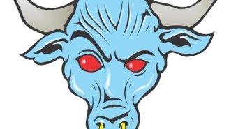 rock_Brahma_Bull