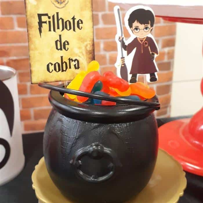 festa harry potter baby