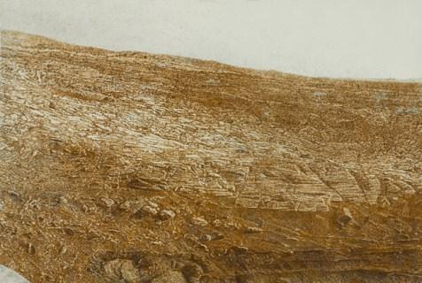 Gal Weinstein Rusted Planet (Mars), dalla serie Places That I Will Not be Invited To, 2012 lana di acciaio e colla su tavola 140 x 200 cm