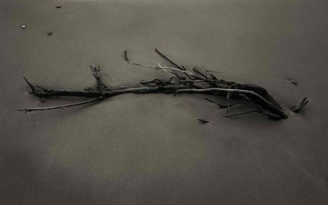 Pino Colla, ANNESSIONE 1, 2012, cm 80x50
