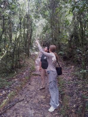 Maria Rebecca Balestra, Journey into Fragility, visita della foresta primaria in Madagascar