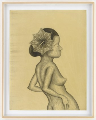 Sandra Vasquez de la Horra, La Contemplante, 2014, graphite on paper, wax, 78.5x60.5 cm