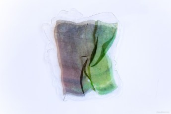 Matt Jacobs, Split Green, pressed painting, resin, plexiglass, organza, 37x30 cm, photo Claudia Scuro.