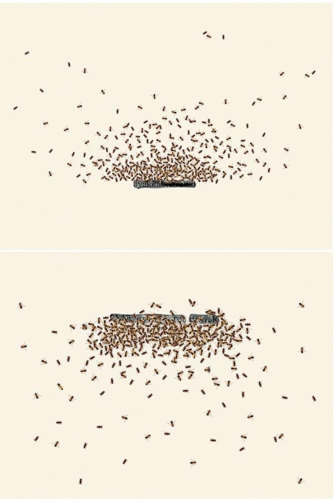 Emilio Isgrò, Le api di Istanbul, 2010, installazione per due elementi, acrilico su tela montato su legno, 220x150 cm, Collezione privata, Firenze