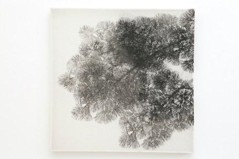 Asako Hishiki, Bisbiglio #1, 2013, xilografia su tessuto, 100x100 cm Collezione privata