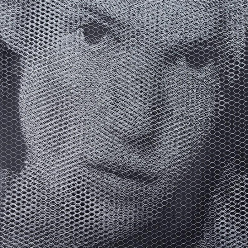 Giorgio Tentolini, Elementi per una teoria della Jeune-fille - Johanna (2), 2017, serie di 3, rete metallica a maglia esagonale intagliata a mano e sovrapposta a fondale nero, 80x80 cm ciascuno