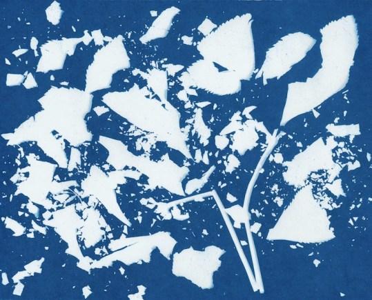 Gohar Dashti, Still Life #14, 2017, archival digital pigment print, photograms b&w, 120x120 cm, cyanotypes (blue print), 97x120 cm, edition of 10 Courtesy the artist and Officine dell'Immagine, Milan