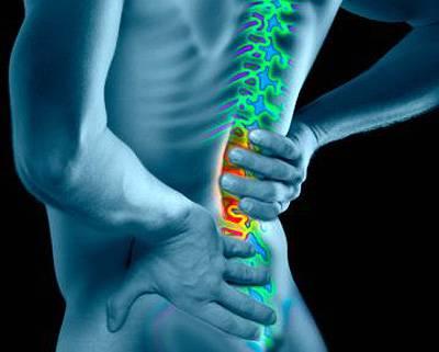 Homme avec amélioré colonne vertébrale, vue arrière (composite numérique)