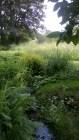 Feeringbury Manor Gardens (14)