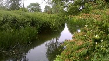 Feeringbury Manor Gardens (15)