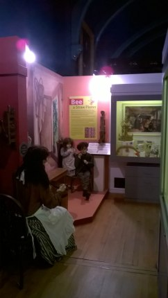 BraintreeMuseum (11)