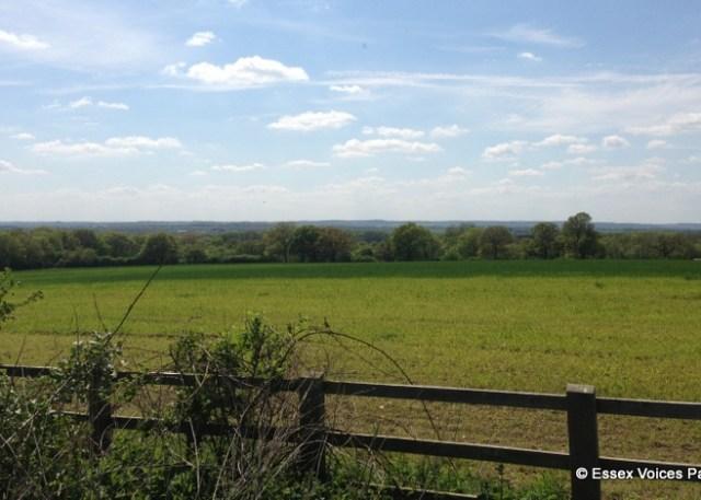 Battle of Bosworth 1485