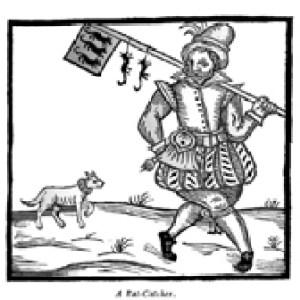 Tudor Rat Catcher