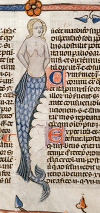 Detail of a bas-de-page scene of a mermaid. From Decretals of Gregory IX with glossa ordinaria<em> (the 'Smithfield Decretals'), (France, S. (Toulouse?), Last quarter of the 13th century or 1st quarter of the 14th century); shelfmark Royal 10 E IV, f.47.