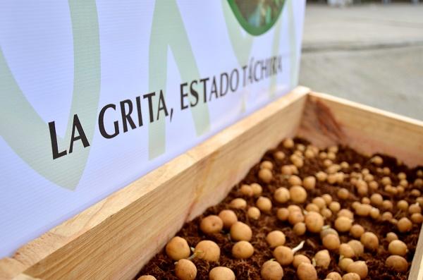 pepsico inaugura centro de producción de semillas en su