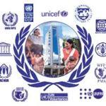 Los Organismos mas importantes de La ONU