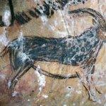 División de la Prehistoria -5