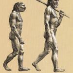 Características del hombre de Cromagnon -2