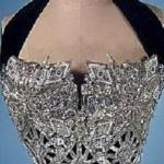whitney bustier (auction item)