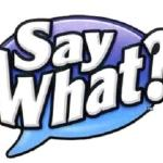 say_what(2012-big)