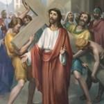 Evangelio San Lucas 12,49-53. Domingo 14 de Agosto de 2016.