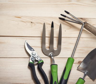 group garden tools on wooden background