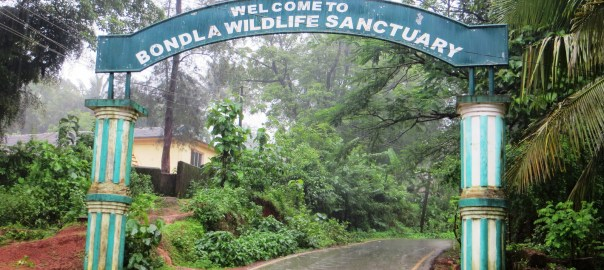 Bondla wildlife sanctury, Goa