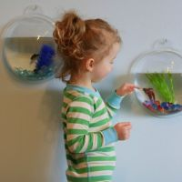 Kids Wall Dome Fish Tank