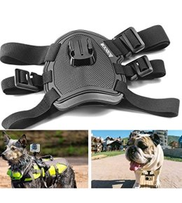 Go Pro Camera Mount for Dogs