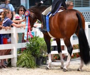Inclusive at Devon Horse Show
