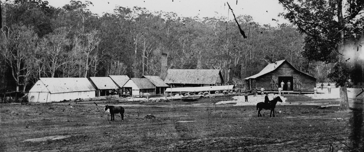 T.B. Stephens' fellmongery at Ekibin, Brisbane, Queensland, ca. 1871 [John Oxley Library, State Library of Queensland, Negative number: 20162]