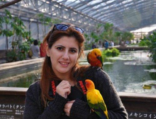 yolunneresindeyim.blogspot.com Yazarı Sergül Kato