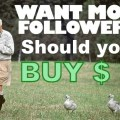Should You Buy Twitter Followers or not?Should You Buy Twitter Followers or not?