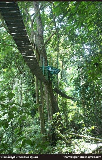 manbukal canopy walk