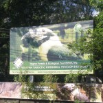 NFEFI Biodiversity Conservation Center:  A Haven for Endangered Negros Wildlife