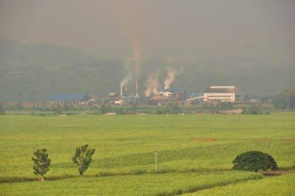 sonedco cogeneration plant