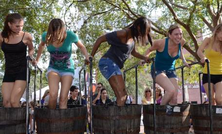 'Dirty Laundry Vineyard' Grape Picking & Stomping Fest