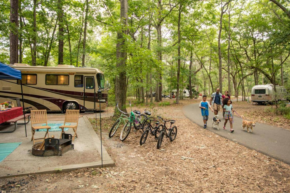 10 Great Spots to Camp in Georgia   Official Georgia Tourism     Pet friendly camping at Skidaway Island State Park in Savannah