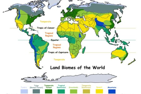 Map Of The Biomes Of The World - Biomes of the us map