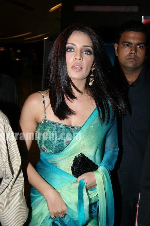 Celina-Jaitley-at-The-Times-of-India-Best-of-Hollywood-book-launch.jpg