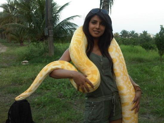 Priyanka-chopra-with-a-python.jpg