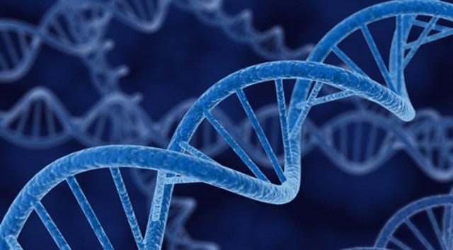 genetics generic