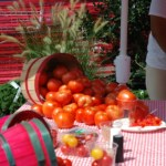 The Homestead Gardens Tomato Fest Is Coming