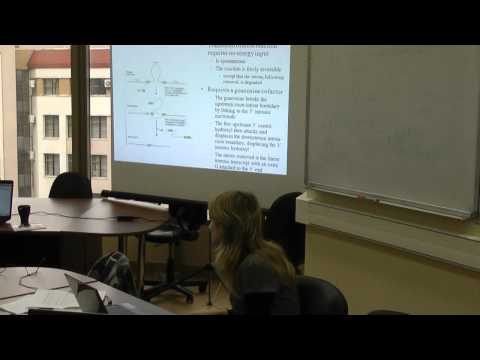 BioTech – Lecture 5